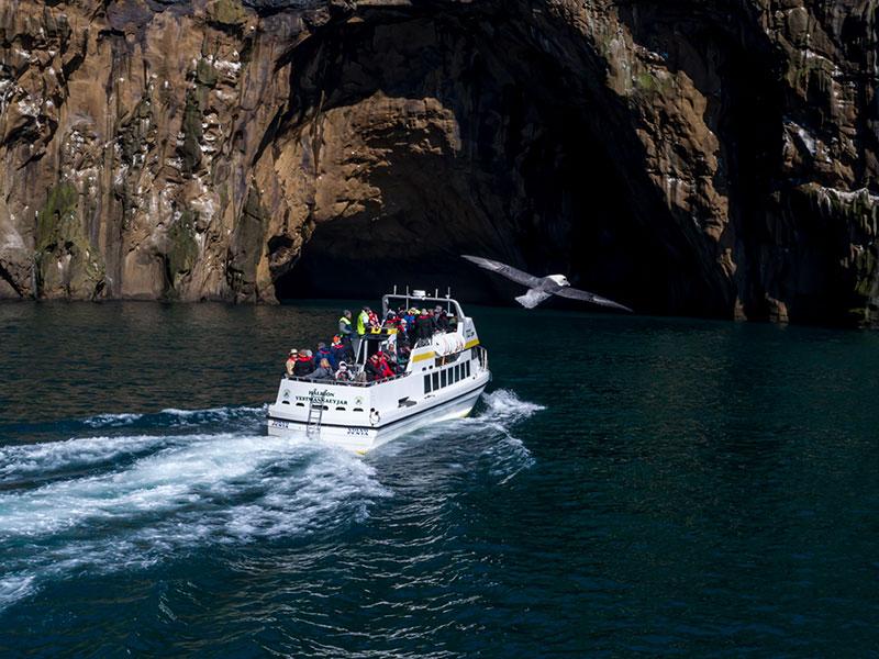 Boat Tours in Westman Islands | Bátsferð í Eyjum